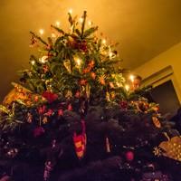 juletræ lys.jpg